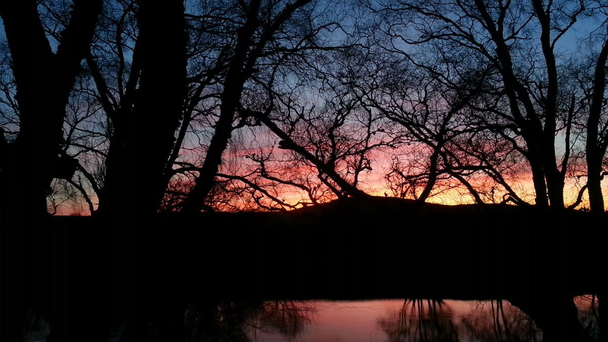 Sunset at the badger hide